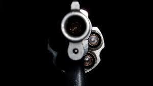 Gun Violence and Investing