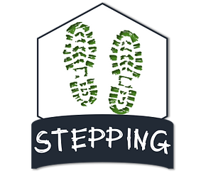 stepping.png