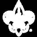 bsa logo white.png