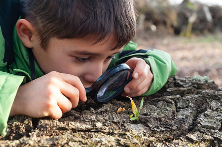 Boy-looking-at-nature-with-magnifier.jpg
