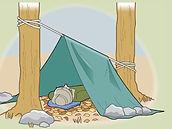 shelter-5.jpg