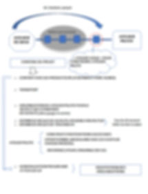 PLAN 2020 CHART2.JPG