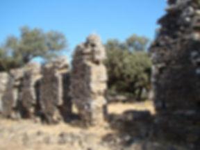 Yacimiento arqueológico de Nertóbriga
