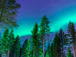 Will northern lights be visible from Oregon this week?