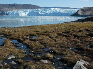 Greenland's ice sheet melted faster than ever before study says.