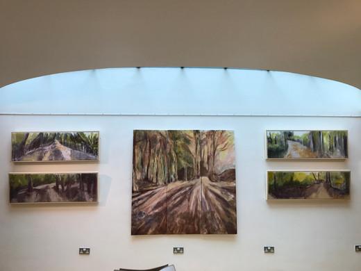 Vivienne Lewin exhibition December 2019 work in situ