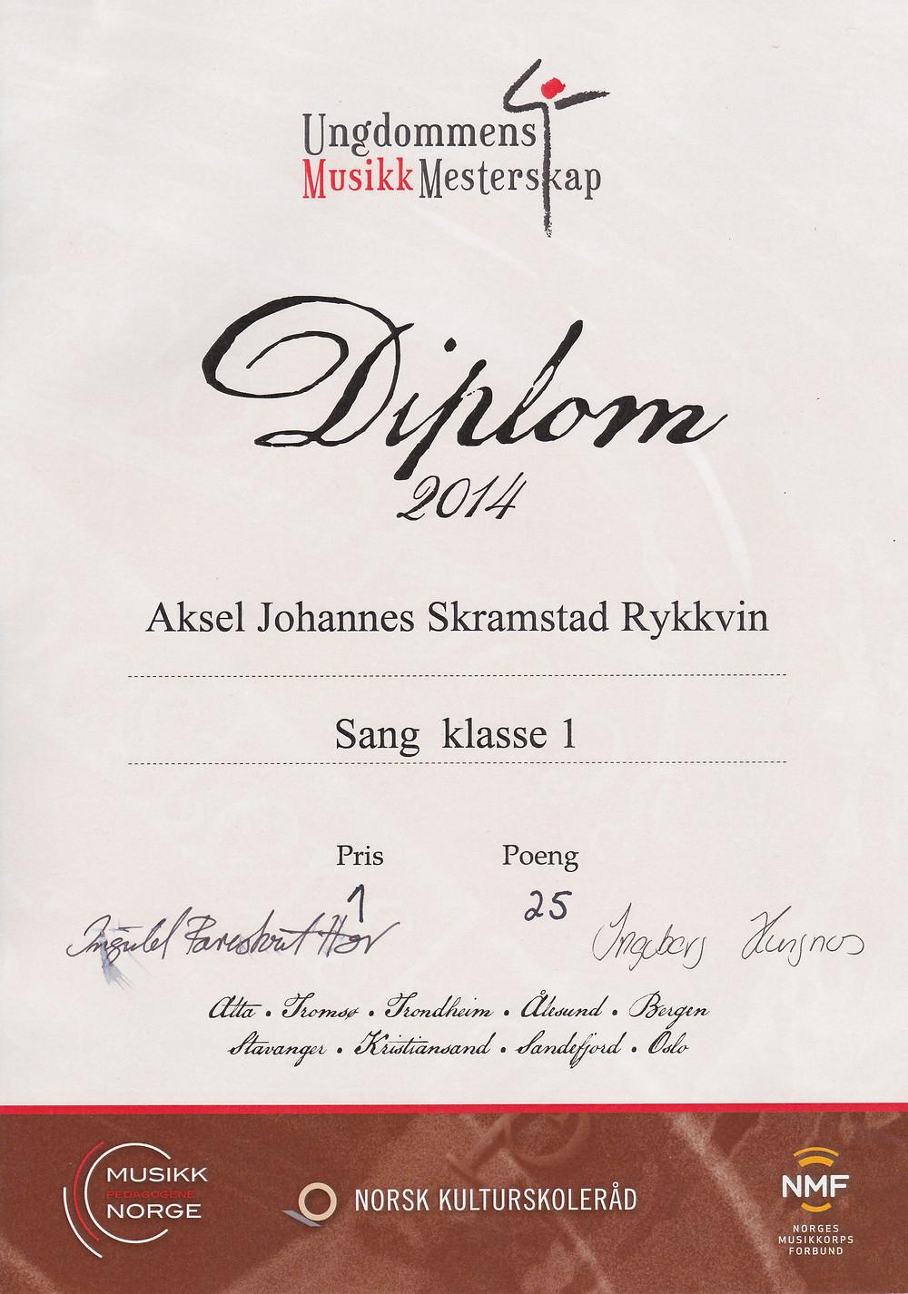 Aksel JS Rykkvin - diplom regionalt UMM 2014.jpg