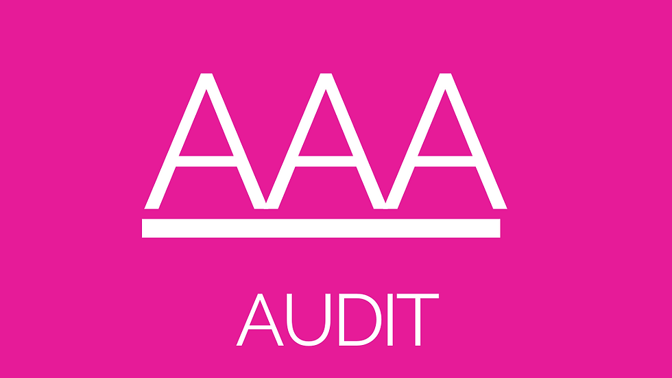 AUDIT - CA Resources Download