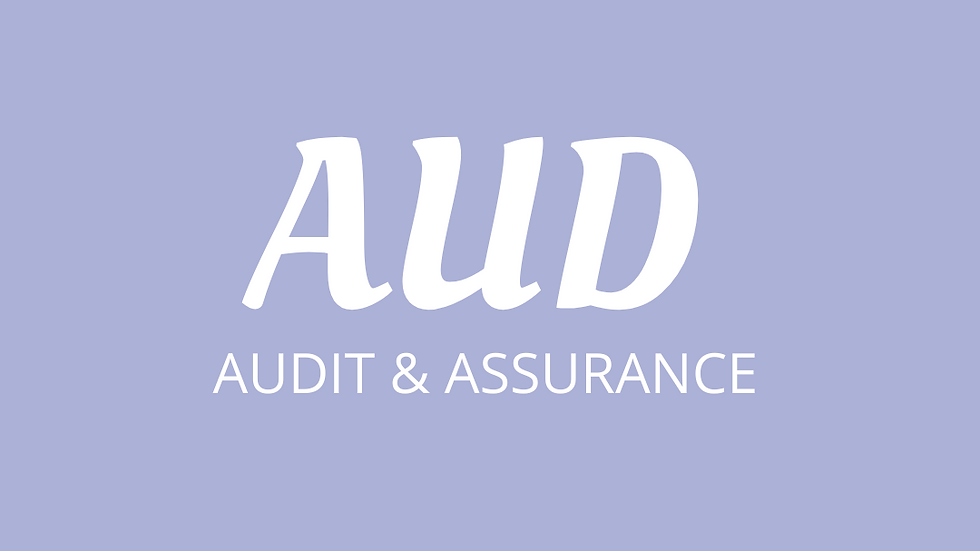 AUDIT - CA Resources Download