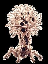 arbre_fond_transparent