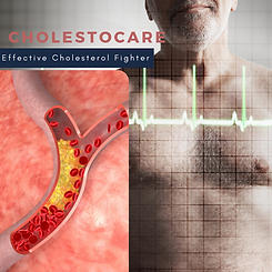 Cholestrol.png