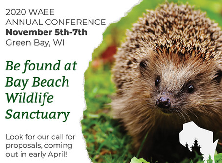 Save the Date WAEE Conference
