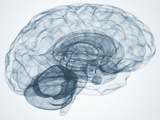Neuroplasticity - changing your brain