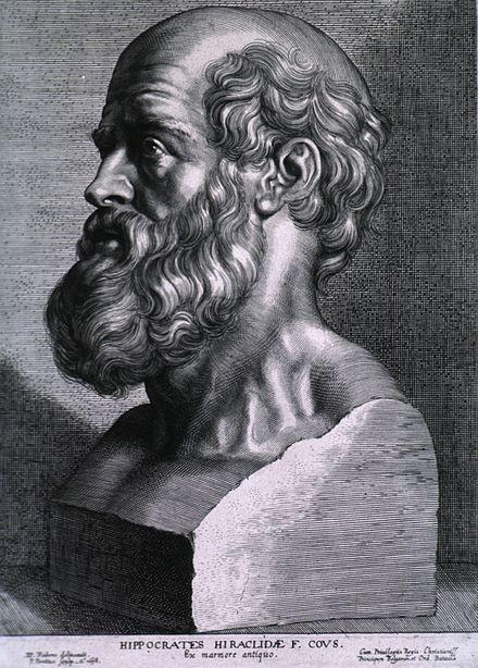 Brachial Girl - hippocrates