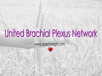 Brachial Plexus Support