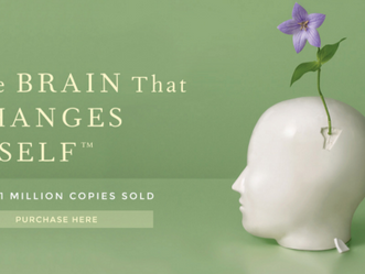 Neuroplasticity - Training Your Brain For No More Pain