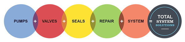 SystemSolutionCirclesForWeb.png