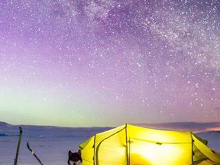 Le avventure di un Husky in Norvegia