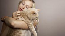 """""""Coccolatore"""" di gatti, il mestiere del futuro"""