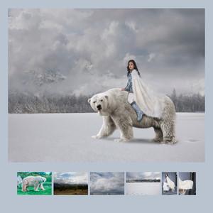 TAPPA_21_01_48645_2_---- Winter Princess