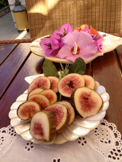 Our own fresh figs