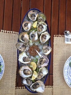 Fresh Ston Oysters
