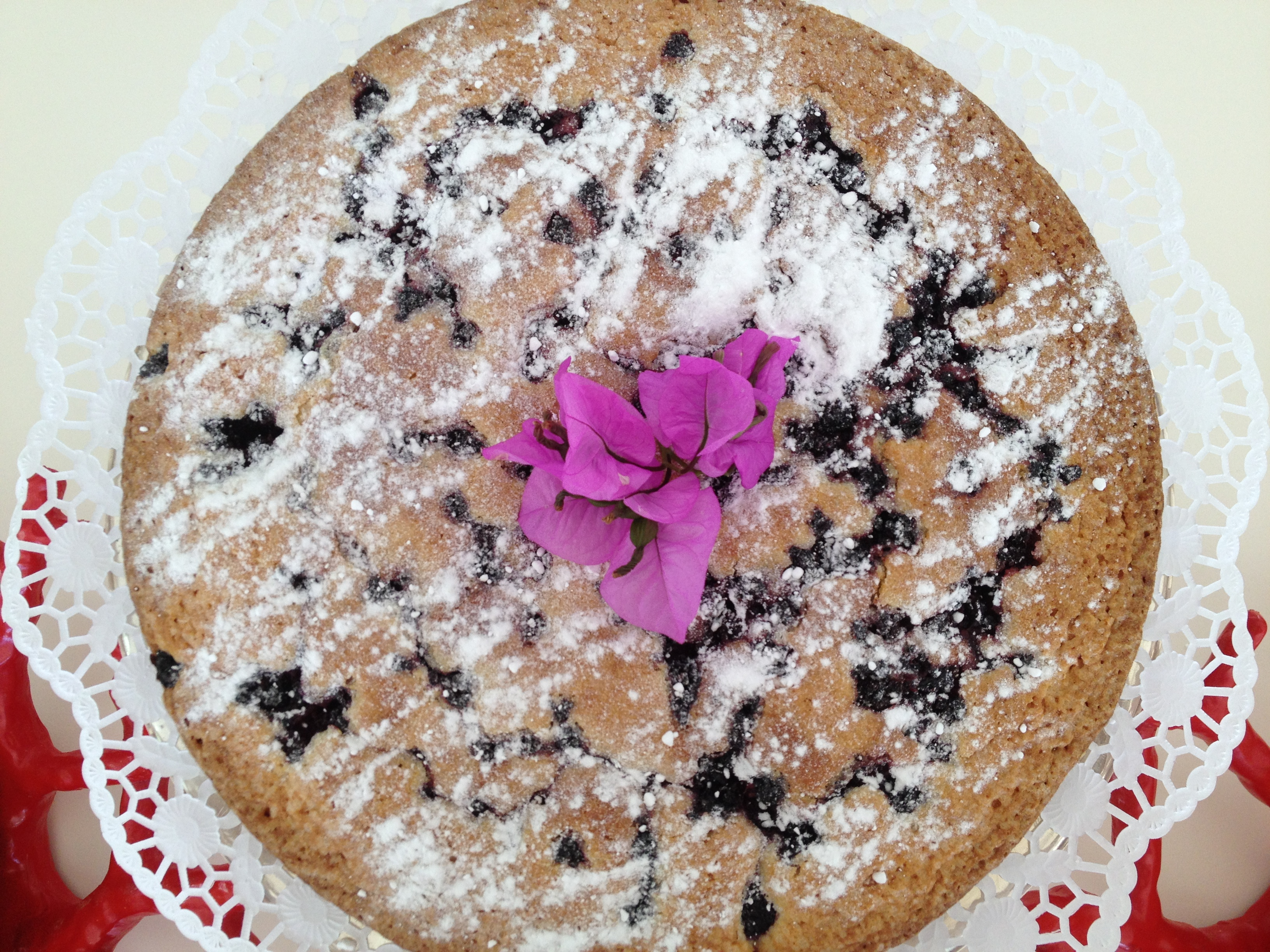 Homeade Blackberry Spongecake