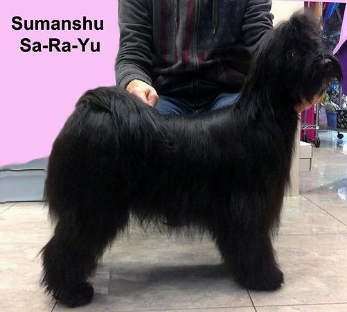 sumanshu sa-ra-yu