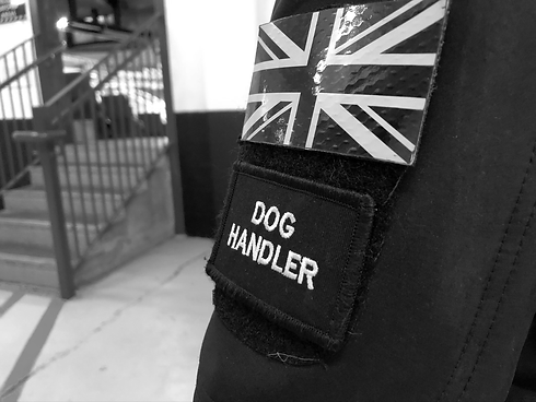 dog handler.png