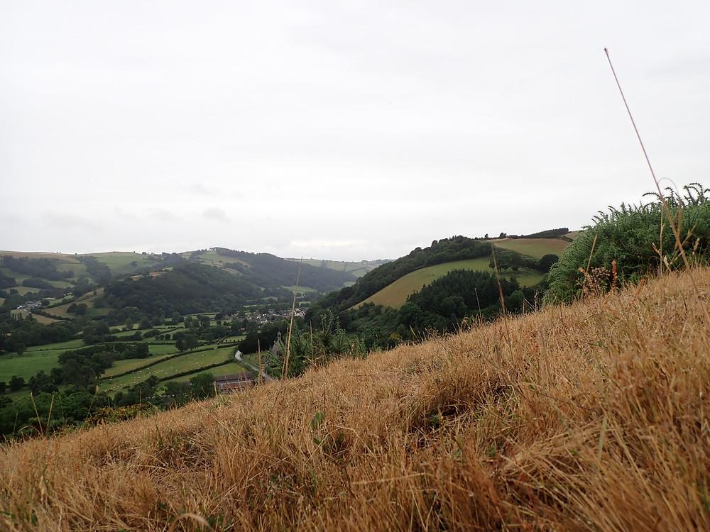 a steep hillside