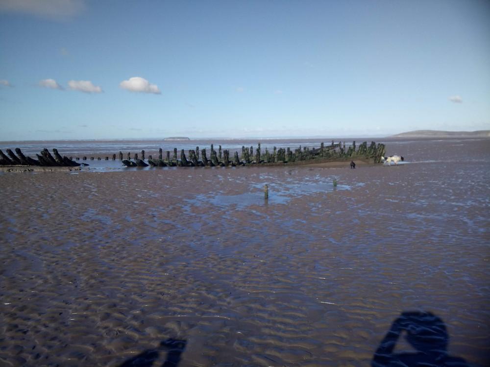 shipwreck on Burnham Beach