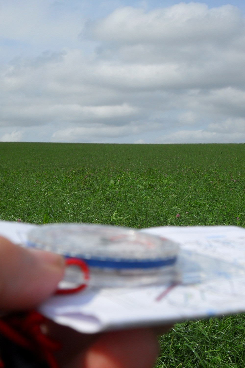 green grassy field, compass and map