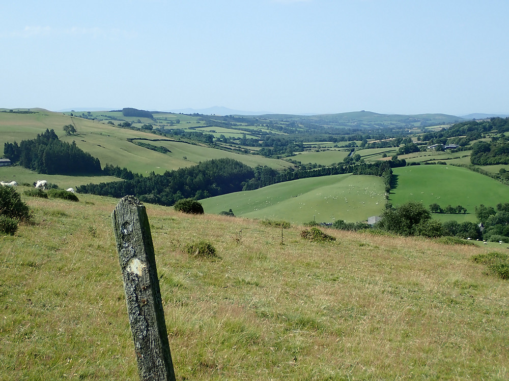 a hilside and more hills in the background