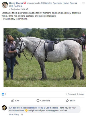 ah-saddles-facebook-review-014.JPG