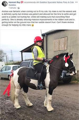 ah-saddles-facebook-review-002.JPG