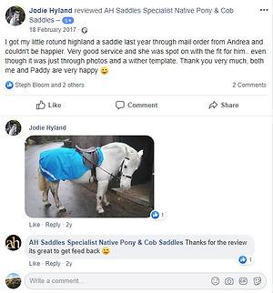 ah-saddles-facebook-review-025.JPG