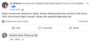 ah-saddles-facebook-review-021.JPG