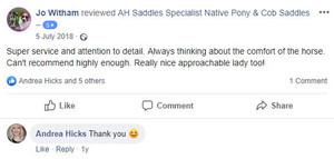 ah-saddles-facebook-review-021.JPG