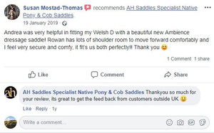 ah-saddles-facebook-review-012.JPG
