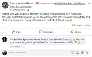 ah-saddles-facebook-review-012.JPG