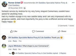 ah-saddles-facebook-review-004.JPG
