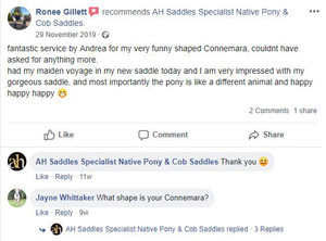 ah-saddles-facebook-review-004.JPG