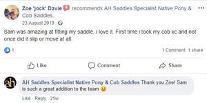 ah-saddles-facebook-review-009.JPG
