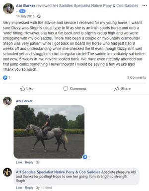 ah-saddles-facebook-review-028.JPG