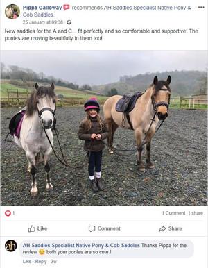 ah-saddles-facebook-review-001.JPG