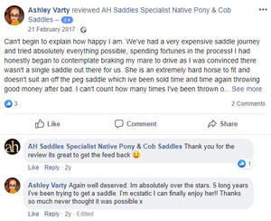 ah-saddles-facebook-review-024.JPG