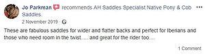 ah-saddles-facebook-review-006.JPG