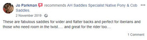 ah-saddles-facebook-review-006.JPG