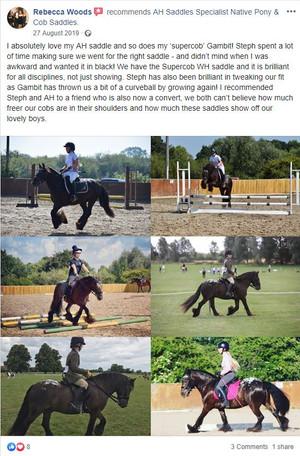 ah-saddles-facebook-review-008.JPG