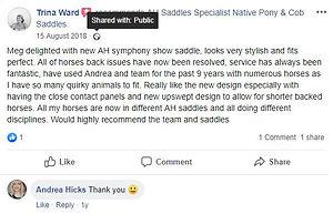 ah-saddles-facebook-review-017.JPG